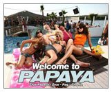 croatia-zrce-beach-club-papaya